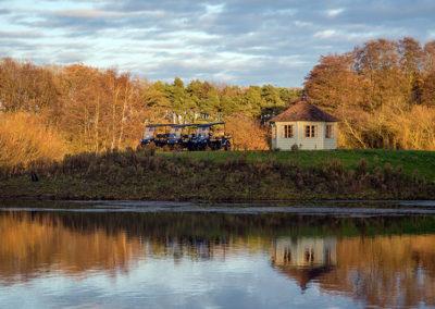 buggies-next-to-lake